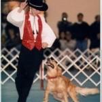 Ballando con…i cani!
