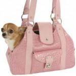 """I """"cani da borsetta"""": cani o surrogati di bambole e bambini?"""