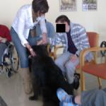 Pet Therapy: ..e così Mauro parlò alla Bella