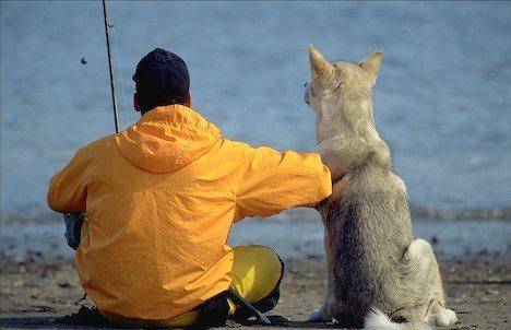 Ma quando parliamo del nostro essere proprietari, quando viviamo appieno la nostra relazione con il cane, come possiamo delegare costantemente agli altri il rapporto con una creatura che ci ama e che noi amiamo?