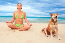 esercizi, compresi quelli di stretching devono essere compiuti con la supervisione di un occhio esperto, non devono essere presi con leggerezza!