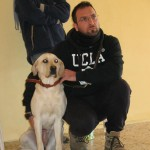 Cultura cinofila a 5 stelle in Puglia, Calabria e Sicilia