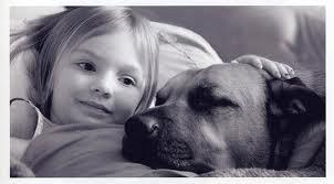 """i cani possono essere dei """"catalizzatori"""" sociali per i bambini autistici"""