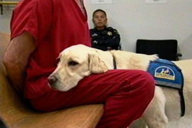 Jeeter mentre è al lavoro. In questa foto sta supportando un detenuto.