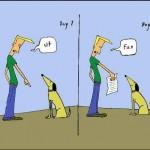 Il mio cane può farcela!