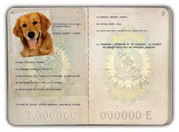 Nel passaporto sono indicati: numero di microchip, vaccinazioni e altre informazioni sull'animale.