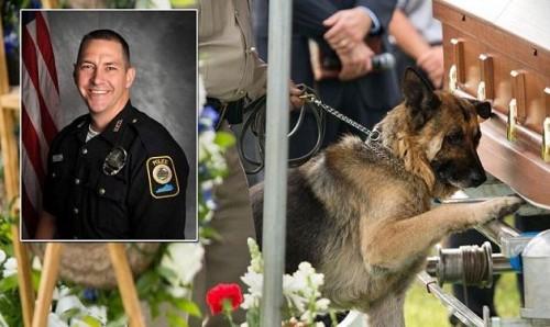 Il cane poliziotto Figo ed il suo partner ed amico, il poliziotto Jason Ellis, ucciso durante una sparatoria.