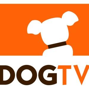 www.dogtv.com