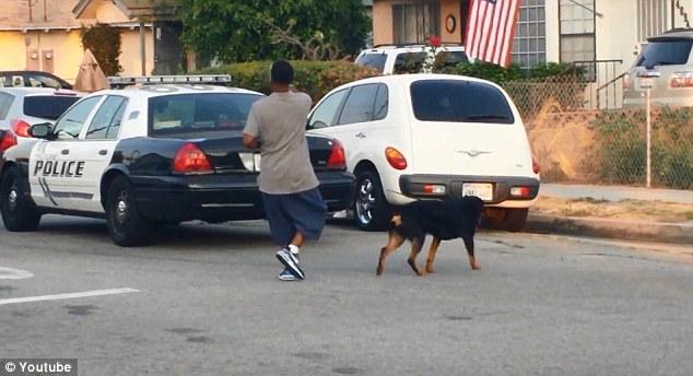 Rosby filma la polizia locale con il suo celluare mentre passeggia con il suo cane Max.