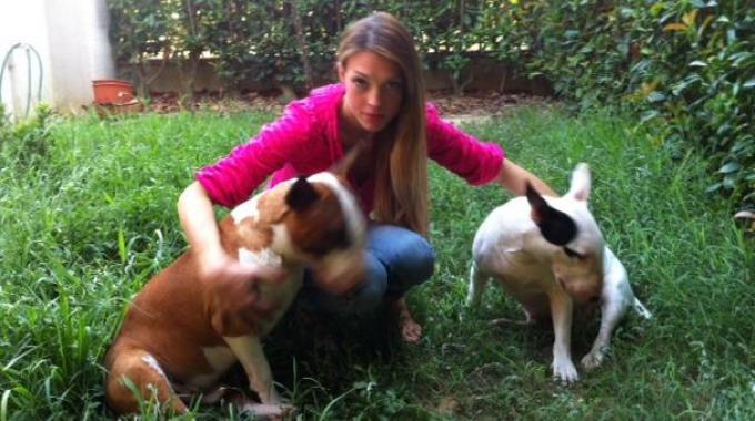 Carlotta Guastini con i suoi due Bull Terrieri, un maschio ed una femmina,