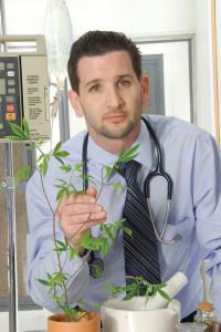 """Secondo il dr. Doug Kramer - www.vetguru.com - l'utilizzo della marijuana per scopi terapeutici offre alla comunità veterinaria una nuova """"opzione terapeutica"""""""
