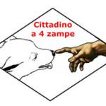 Il Patentino cinofilo del C4Z – Cittadino a 4 Zampe!