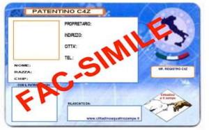 Facsimile Patentino C4Z