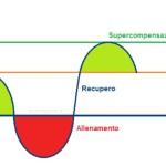 Preparazione atletica del cane 4 – La curva della supercompensazione