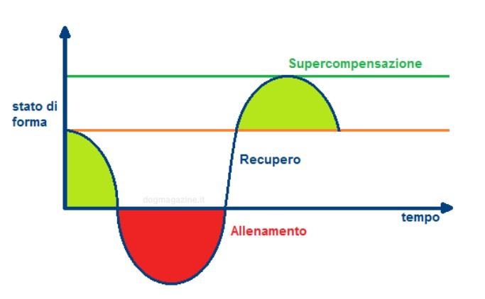 supercompensazione-forma