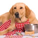La dieta Barf per cani e gatti